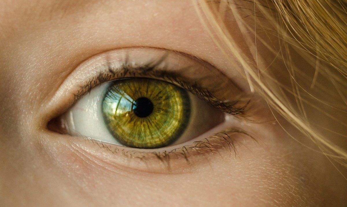 The Eyes HaveIt