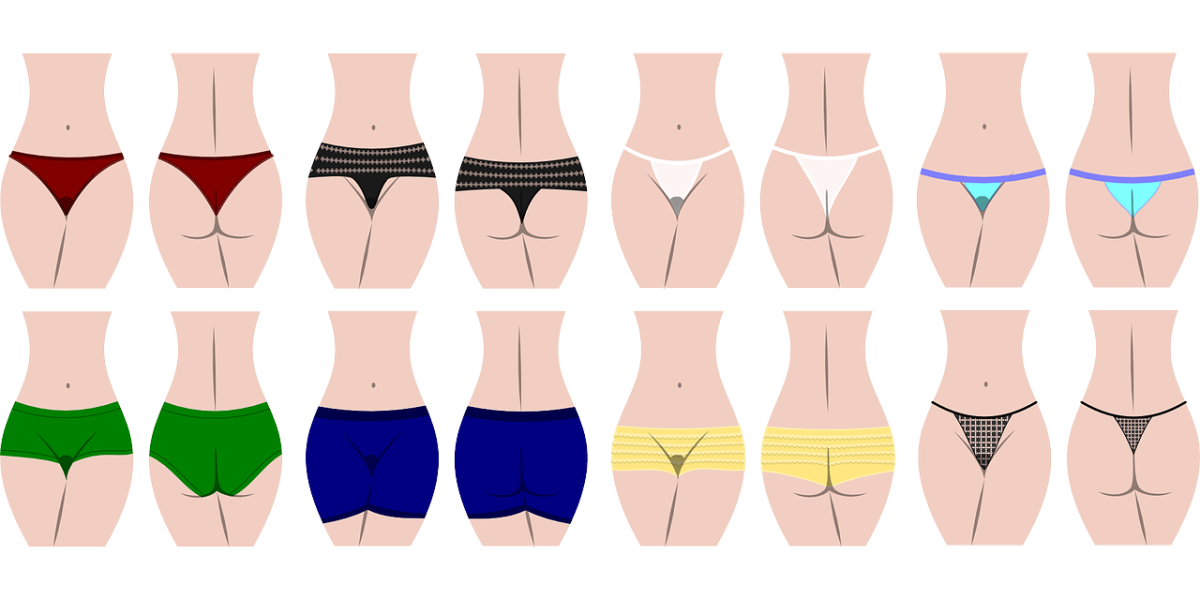 An array of women's panties (clipart)