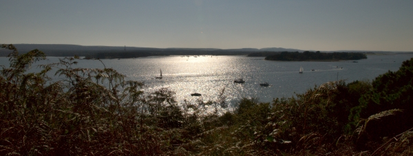 An image of Poole Harbour in Dorset, in brign sunshine