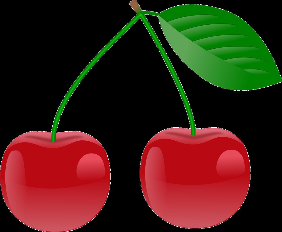 clipart cherry cherries fruit pair